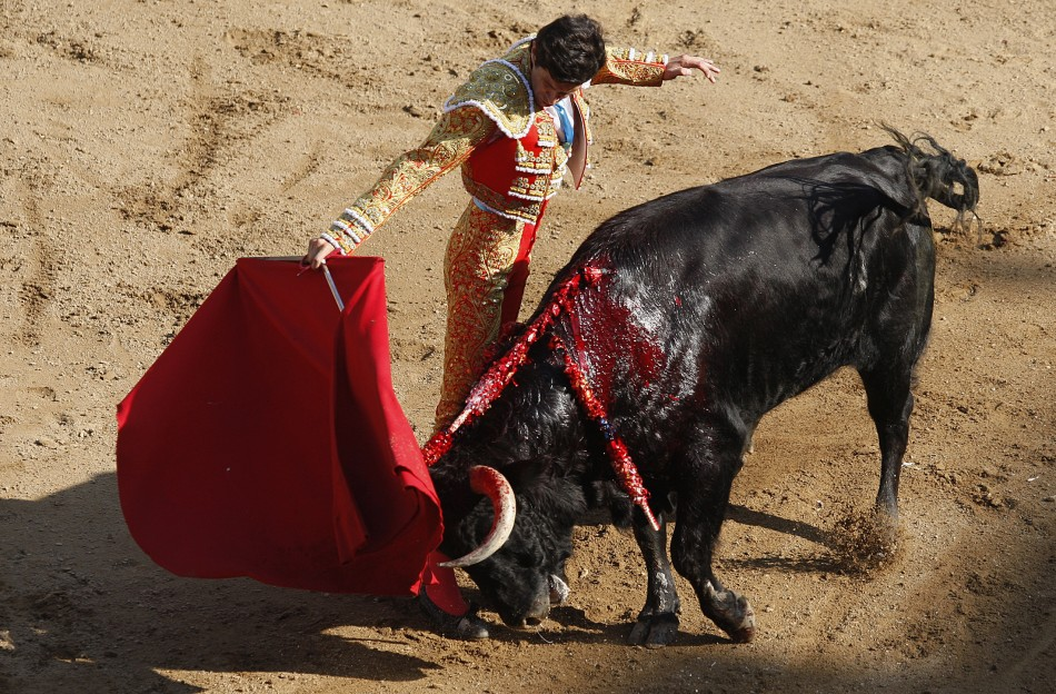 211012-cali-bullfight